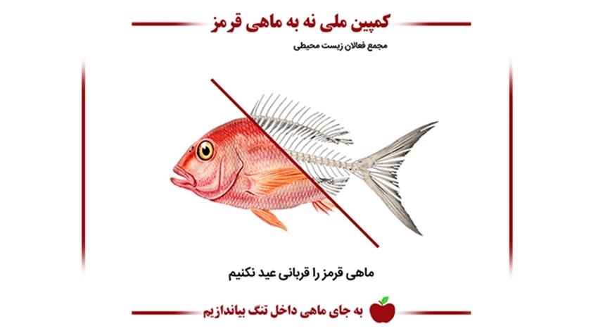 کمپین نه به ماهی قرمز