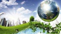 نقش سازمانهای مردمنهاد در توسعه اقتصاد سبز