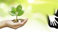 افزایش بیرویه موسسات خیریه، نگرانیهایی ایجاد کرده است