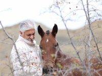 پزشک خراسان شمالی ۲۵ اسب را برای کمک به سیلزدگان به مزایده گذاشت