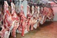 توزیع ۱۰۰۰ کیلوگرم گوشت قرمز بین نیازمندان کرمانی