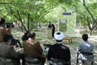 دعوت امام جمعه ایلام از باغداران برای شرکت در طرح شجره طیبه
