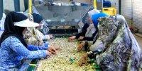 مراکز نیکوکاری کارآفرینی در استان راه اندازی می شود