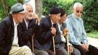 واگذاری پروندههای سالمندان کمیته امداد خراسان شمالی به مراکز نیکوکاری