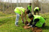 پویش دانش آموزی مهربانی با طبیعت در کشور کلید خورد